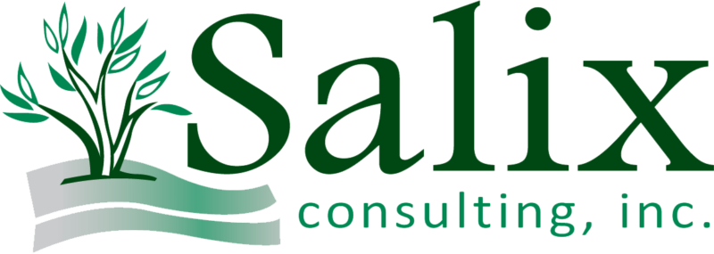 Salix Consulting, Inc. Logo